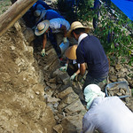 景観保全プロジェクトの写真