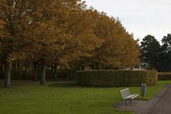 Floriade_251015_20 (Bellcaunion) Tags: park autumn fall nature zoetermeer rokkeveen florapark