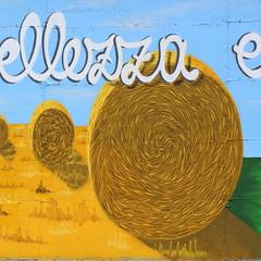 """Along Serio river - Detail 08: hay bales"" by WIZ (Wiz Art) Tags: urban italy streetart art nature wall writing landscape photography graffiti artwork artist spray urbanart streetartist writer graff graffitiartist murales bergamo aerosolart graffitiart wiz sprayart streetstyle valseriana wizart flickrgraffiti graffitism sprayartist wizboy"