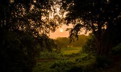 Sunrise (Amit Nadgeri) Tags: morning india nature sunrise landscape photography greenery karnataka amit bellary nikond3200 sandur nadgeri