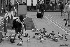 """HUNGRY BIRDS"" (Pedro Ramos Costa) Tags: people costa white black monochrome birds canon person eos pessoa pessoas belgium pigeon pigeons pombo pedro antwerp antwerpen ramos pombos milho bélgica hangry antuérpia 700d"