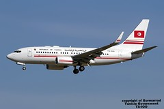 TS-IOO LMML 11-11-2015 Tunisia - Government Boeing 737-7H3(BBJ) CN 29149 (Burmarrad (Mark) Camenzuli Thank you for the 17.3) Tags: cn tunisia aircraft airline government boeing registration 29149 lmml tsioo 11112015 7377h3bbj