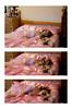 Squashed fairy (RachelMarie@) Tags: pink tutu ballet tulle girl me self brocade girly satin pyjamas pjs leopard bed tripdych ballerina innocent innocence