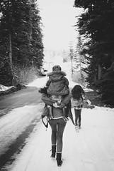 (AubreyRebecca) Tags: road family trees winter wild blackandwhite bw snow tree nature forest blackwhite washington woods northwest adventure explore wa familyphotos familyportrait pnw winterwonderland woodsy happylittlefamily exploremore wildernessexplorers northwestisbest upperleftusa thatpnwlife adventuresawaitus