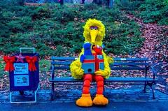 Please be nice...to BIG BIRD! (mitzgami) Tags: newyorkcity newyork bigbird nikon centralpark manhattan elmo sesamestreet cookiemonster nikonphotography d7000