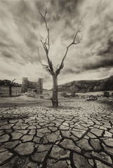 Mansilla de la Sierra (Alfredo.Ruiz) Tags: drought reservoir dry village flood autumn tree ruins abandoned