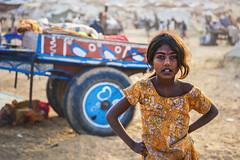@ Pushkar fair, Rajastan (ayashok photography) Tags: rangderajasthan nikon ayashok ayashokphotography nikond300 nikond700 nikkor24120mmvr rajasthan pushkar camelfair camels market india rajastan rajasthani ayp9431