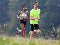 Hallwilerseelauf: Nema Hassan auf dem Weg zum Sieg im Halbmarathon