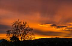 burning light (krllx) Tags: midtnorge norway scandinavia srtrndelag trondheim trndelag city colorful colors dawn europa europe light morning nature norge skandinavia sunrise 20161026dsc06922201610261