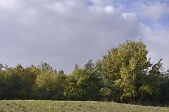 2_FarcetParkJpeg_DSC1128 (Kung Fu Jim) Tags: nature water sky trees