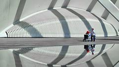 Housekeeping (gerard eder) Tags: architecture architektur arquitectura world travel reise viajes city ciudades europa europe espaa spain spanien stdte calatrava santiagocalatrava cityofartsandsciences stadtderknsteundderwissenschaften ciudaddelasartesyciencias cleaning reflections spiegelung valencia