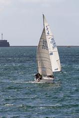 GBR 4360 11th Sept 2016 #1 (JDurston2009) Tags: gbr4620 jeli pantaenius plymouthsound devon plymouth sailing sailingboat