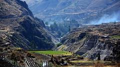 Valle del Colca (Miradortigre) Tags: peru colca valle valley sudamerica landscape terrazas cultivos