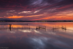 My Dreamed Sunset II. [Explored & FP 10-20-2016] (dasanes77) Tags: canoneos6d canonef1635mmf4lisusm tripod landscape seascape cloudscape waterscape clouds dramaticsky red orange yellow horizon reflections shadows canes nets longexposure albuferaofvalencia valencia sunset sun bluehour night naturallight calm peace tranquility water magiclight