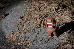 Revoltech - Domo-kun (SwedishRobotFish) Tags: revoltech kaiyodo domokun figure toy outdoors