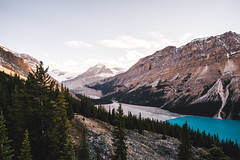 Peyto (eric.vanryswyk) Tags: peyto lake bow summit glacier field icefields parkway alberta banff canmore highway 93 calgary edmonton rocky mountains rockies sky sunset dusk golden hour hill cliff forest trees blue