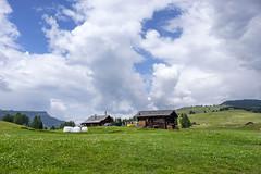 Alto Adige (Italy) - Alpe di Siusi (Massimo Battesini) Tags: nationalgeographic worldtrekker fujifilmxt1 fuji xt1 fujixt1 fujifilm finepix fujinon fujinonxf18135 fuji18135 fujifilmfujinonxf18135mmf3556rlmoiswr montagna montagne dolomiti mountains montaas berg dolomite dolomitas dolomites alpi alpes alps alpen castelrotto trentinoaltoadige italia it italy italie italien europa europe siusi seiseralpe alpedisiusi seiseralm