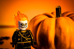 HALLOWEEN 2016 : LEGO SERIE IMG_5717 (photo.bymau) Tags: bymau canon 7d macro proxy lego toy jeux jouets jouer figurine little people miniature citrouille halloween monday october31spookyandfrightful mondays macromondays