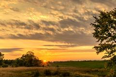 Burst of Light (tquist24) Tags: hdr indiana nikon nikond5300 outdoor autumn clouds fall farm geotagged morning pasture rural sky sun sunburst sunrise tree trees goshen unitedstates