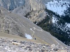 Mt Yamnuska Summit Scramble - Hikers amidst the Rockies (benlarhome) Tags: yamnuska exshaw alberta canada scramble scrambling hike hiking trail path