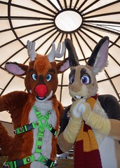 Midwest FurFest 2016 109 (finbarzapek / SeanC) Tags: midwest furfest 2016 mff mwff furry con convention furries fursuit fursuits animal costumes