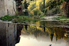 Mystic river (Croix-roussien) Tags: ardèche france nature reflection reflet tree house river largentière