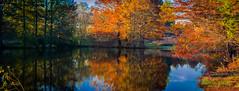 reflections (ttounces) Tags: reflections ttouncesjan lake thebestofday winner