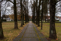 The Death Alley (modestmoze) Tags: cemetery path old statue respect 2016 500px autumn october day sky clouds cloudy nature architecture outside outdoors travel explore out grass moss trees leaves branches houses alytus lithuania blue white grey tiles green brown yellow alley treeline narrows