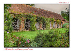Old Stables at Barrington Court (Lady Ann 2010) Tags: ladyann2016 ricohgx100 barringtoncourt somerset architecturalphotography stable gardens topazimpression rosecoveredarches oldtimber ancientcobblestones bucoliclifestyle 18thand19thcenturies england uk