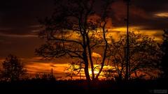 Horizon NL (rudyvandeleemput) Tags: horizon kinderdijk nieuwlekkerland lekkerland zonondergang zon ondergang sun down sunset