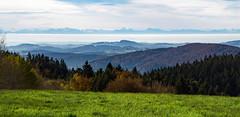 A great theatre stage (hloklm) Tags: alpen fhn fhnwetterlage bayrischerwald bume berge wolken feld herbst herbstwald