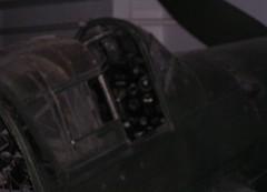 "Junkers Ju-87G-2 Stuka 7 • <a style=""font-size:0.8em;"" href=""http://www.flickr.com/photos/81723459@N04/31154198021/"" target=""_blank"">View on Flickr</a>"