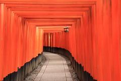 Fushimi Inari Taisha (Kyoto (cattan2011) Tags: travelblogger traveltuesday travel archers building architecture art contemporaryart streetart streetphotography streetpics natureperfection naturephotography nature landscapephotography landscape japan   kyoto fushimiinaritaisha