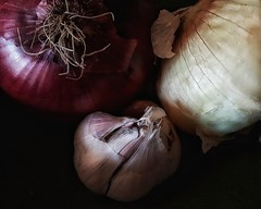 Kitchen Bowl Still Life (Flickr Goot) Tags: november 2016 kitchen onion garlic red yellow available light handheld samsung galaxy s6