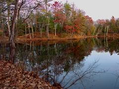 Mine Falls Park - Nashua River 8 (dennisgg2002) Tags: nashua river new hampshire nh autumn fall