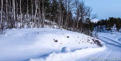 White Stuff   Norway (keithhull) Tags: snow arctic norway tromso trees winter malangen