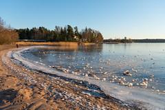 Frozen beach (JarkkoS) Tags: 2470mmf28eedafsvr beach cold d800 espoo fall finland frozen ice landscape suvisaaristo water esbo uusimaa fi