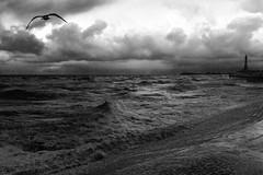 Yng nghri'r ystormus wynt / In the cry of the stormy wind - Blackpool (Rhisiart Hincks) Tags: blackpool sirgaerhirfryn fyldecoast lancashire lloegr powsows england ewrop europe ròinneuropa eu ue sasana brosaoz ingalaterra angleterre inghilterra anglaterra 英国 angletèrra sasainn انجلتــرا anglie ngilandi fylde holidayresort cyrchfangwyliau morlun seascape môr mor mer muir sea itsaso tonnau gwagennoù olatuak waves vagues tuinn tonnan duagwyn gwennhadu dubhagusgeal dubhagusbán zuribeltz czarnobiałe blancinegre blancetnoir blancoynegro blackandwhite 黒と白 zwartenwit mustajavalkoinen crnoibelo černáabílá schwarzundweis اسودوابيض، bw feketefehér melnsunbalts juodairbalta negrușialb siyahvebeyaz črnoinbelo черноеибелое чорнийібілий