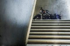 Harley Davidson (Erwin Lorenzen) Tags: bike harleydavidson hd motorrad