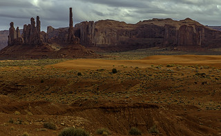 Mustangs in the Canyon: Monument Valley