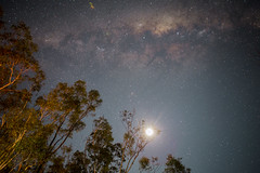 Mt Elgin (Molly Voigt) Tags: nightphotography trees moon colour night canon stars outdoors country australia victoria campfire galaxy milkyway 6d nhill 2470 canon6d mtelgin illassa mollyvoigt littlevegemite