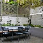 Pimlico Courtyard Sep 2015