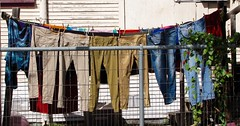 Trousers (john.fisch) Tags: pants wash laundry trousers clotheslines