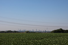 First view on Frankfurt after a long way by bike. (Southranch) Tags: skyline mainhatten