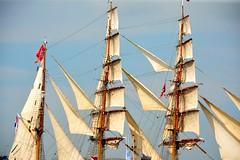 Sail 2015 – Sails of the Europa (Michiel2005) Tags: holland netherlands amsterdam boot boat europa ship nederland sail lightship zeilschip schip sailamsterdam sailingvessel lichtschip senatorbrockes sail2015 sailamsterdam2015 elbe4