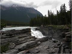 Athabasca-Falls (F. Ovies) Tags: canada montañas rocosas