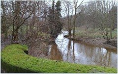 (Riik@mctr) Tags: wood winter rain river nokia phone cheshire outdoor serene pk damp carrs styal wilmslow bollin n95