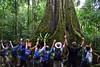 worship the tree of life (philipdixon) Tags: ecuador campococha good treeoflife jungle