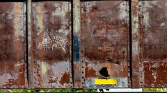 creak - COR (timetomakethepasta) Tags: creak colossus roads kor freight train graffiti art moniker rusted rust rusty hole metal bent