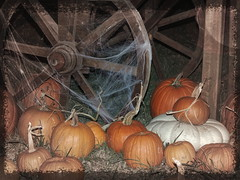 Travel by Night (clarkcg photography) Tags: pumpkin gourd wagon wheel wagonwheel spoke web spider spiderweb night slidersunday fall texture texturaltuesday muskogee oklahoma castleofmuskogee